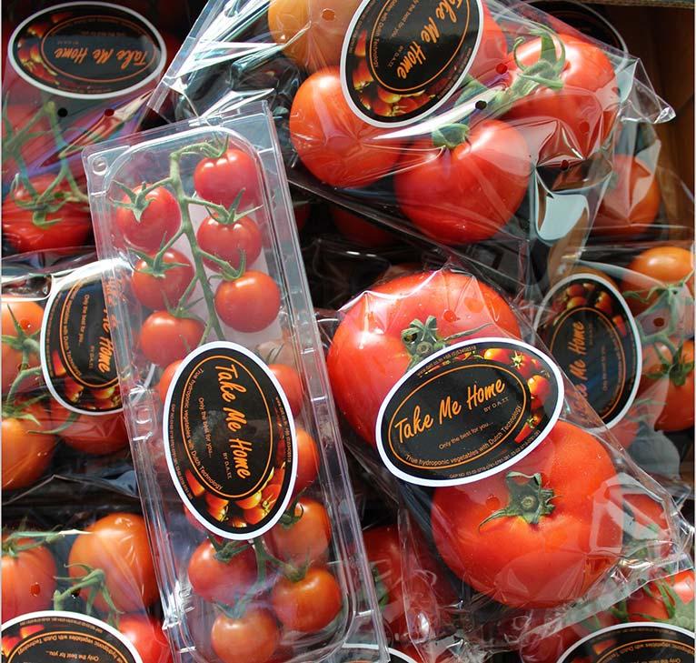Take me Home tomatoes