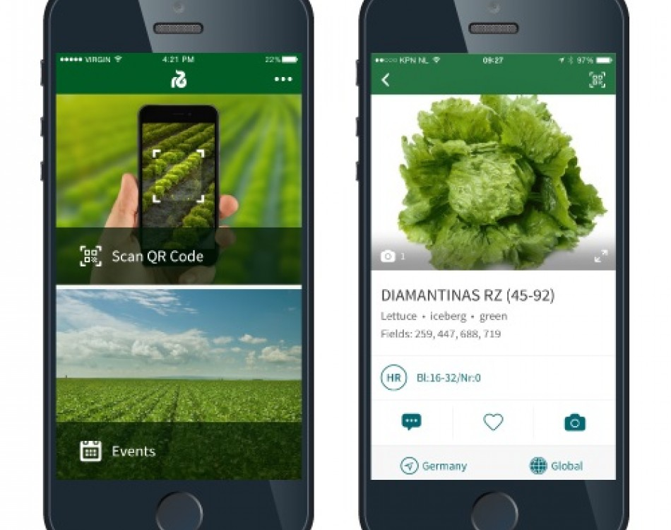 Rijk Zwaan demo partner app enhances demo field visit